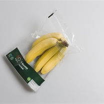 banana - Twin-Bag